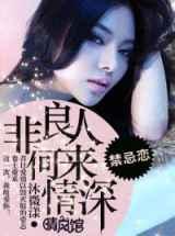 《非良人何来情深》全本TXT小说下载-作者:沐微漾